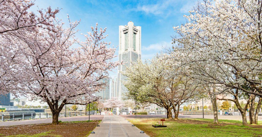 横浜市中区の地域特性を把握し、高く売るための戦略