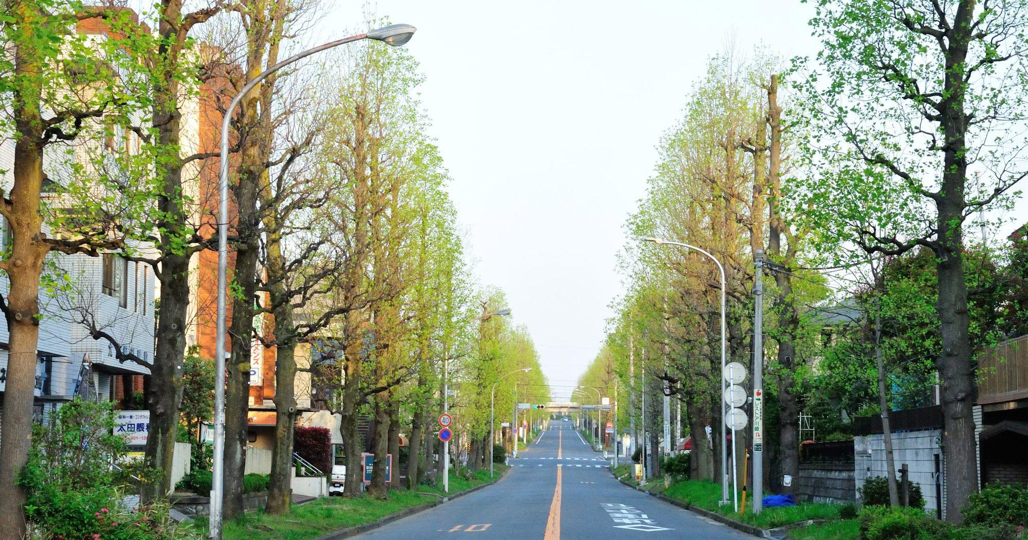 横浜市青葉区で高く不動産を売却するコツと地域情報・相場